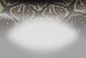 06_Snake